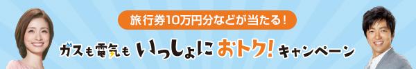 旅行券10万円分などが当たる!ガスも電気もいっしょにおトク!キャンペーン